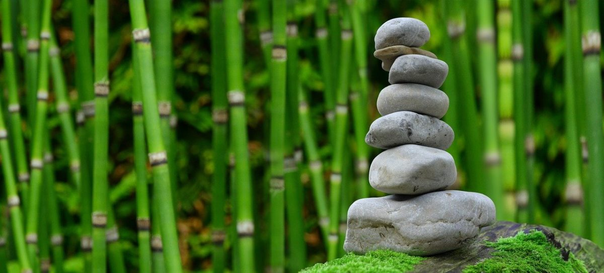 Piękny oraz porządny ogród to zasługa wielu godzin spędzonych  w jego zaciszu podczas pielegnacji.